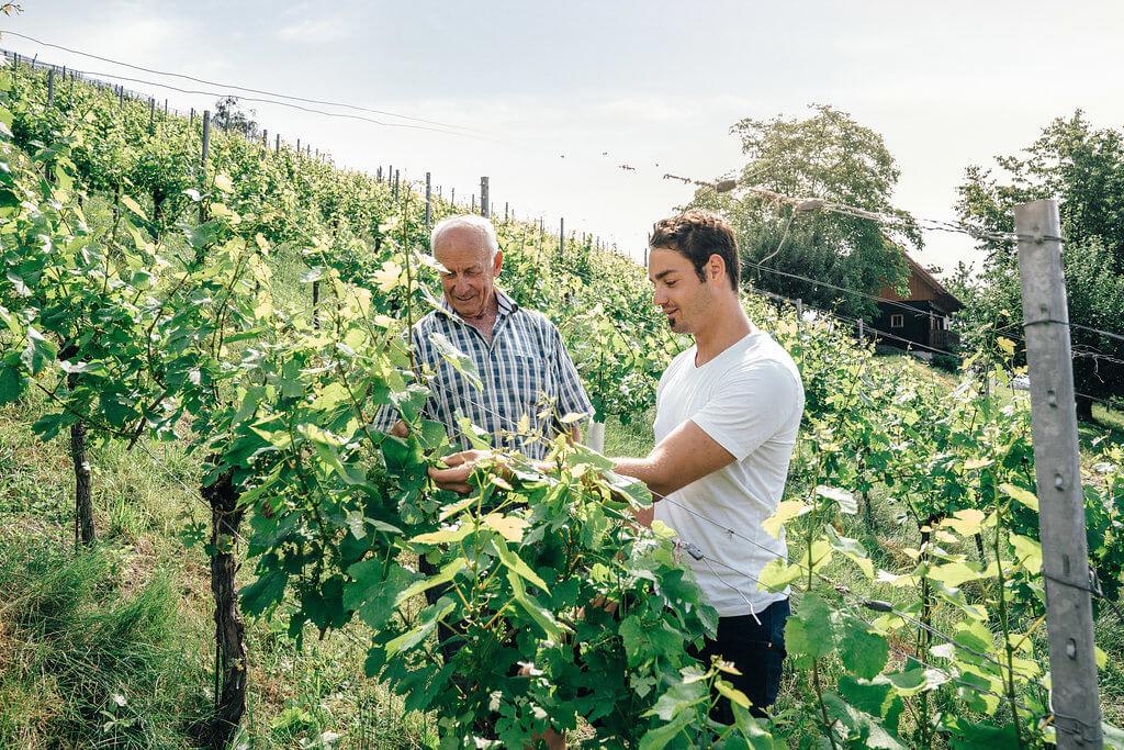 Garber Patrick mit Opa im Weingarten