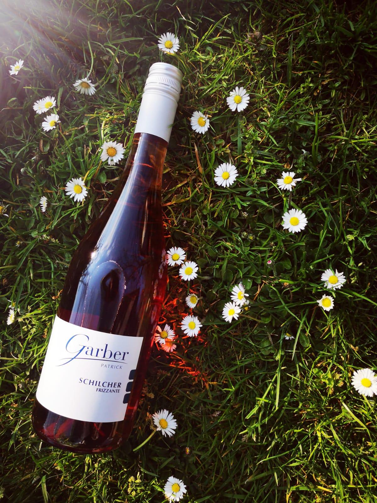 Schilcher Frizzante liegt in der Blumenwiese mit Gänseblümchen